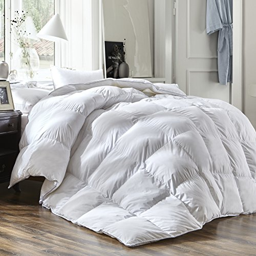 Luxury Queen Size White Goose Down Feather Comforter Duvet Insert 600 Thread Count Hypoallergenic 100% Cotton 600FP,Cozy Down Duvet with 8 Corner Tabs.All Seasons Down Comforter.