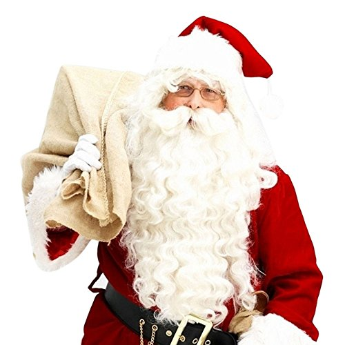 HKDGID Christmas Santa Claus Wig and Beard Set Adult Santa Suit Costumes Accessory Fancy Dress up for Christmas (Wig & Beard)