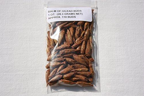 Bulk Herbs: Balm of Gilead Buds - 1 oz (Cottonwood Tree) Organic Wicca Pagan Magick