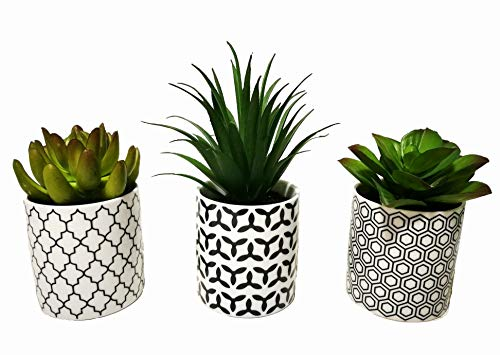 Pretty Home Potted Artificial Succulent Plants, Set of 3, Tile Pattern Pots