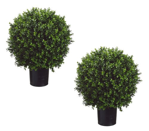 Set of 2 - Pre-Potted 24' High Ball Shaped Boxwood Topiary- 16' Diameter - Plastic Pot
