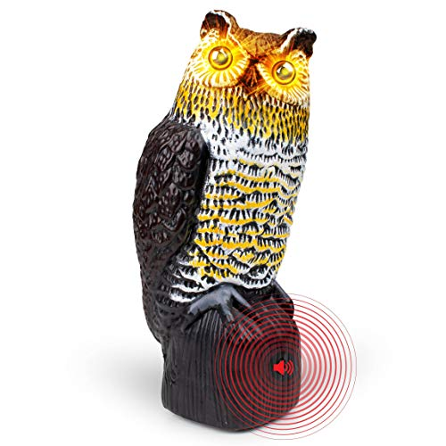 Livin' Well Owl Decoy Bird Deterrent - Scarecrow Fake Owls to Keep Birds Away and Bird Control Garden Owl w/ Solar Powered Owl Eyes and Noise to Scare Birds