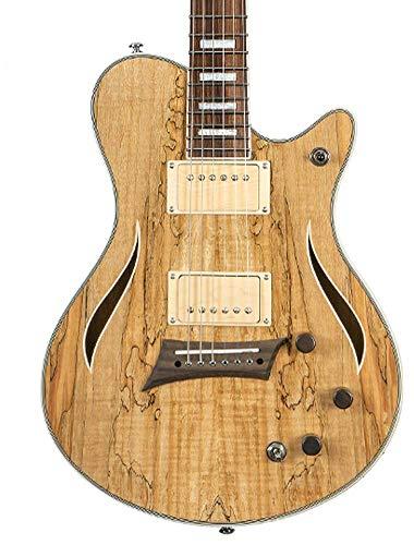 Michael Kelly Electric Acoustic All-in-One Hybrid 55 Guitar (MKHSSSPPYZ)