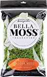 Bella Moss 141112070 Preserved Spanish Bulk Moss, Green