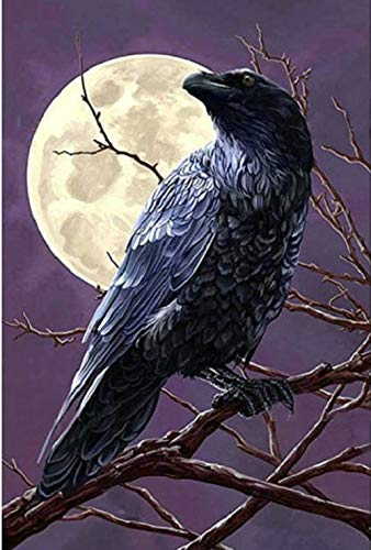 Diy Oil Paint by Number Kit for Adults Beginner 16x20 Inch - Moonlit Crow,Drawing with Brushes Christmas Decor Decorations Gifts (Framed)