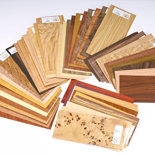 Sauers Wood Identification Kit