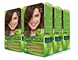 Naturtint Permanent Hair Color 5G Light Golden Chestnut (Pack of 6), Ammonia Free, Vegan, Cruelty Free, up to 100% Gray Coverage, Long Lasting Results