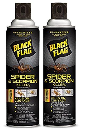 Black Flag Spider and Scorpion Killer Aerosol Spray, 16-Ounce (Case Pack of 2)