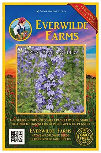 Everwilde Farms - 2000 Great Blue Lobelia Native Wildflower Seeds - Gold Vault Jumbo Seed Packet