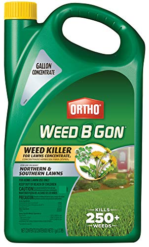 Ortho 0430005 B Gon Weed Killer for Lawns Concentrate, 1-Gallon, 1 gal