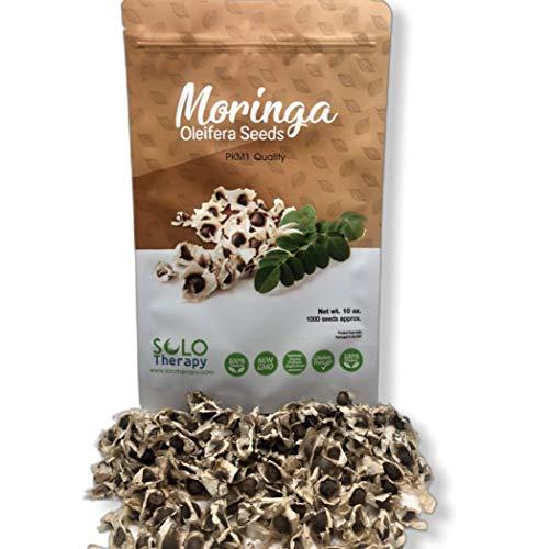 Organic Moringa Seeds | 1000 Seeds Approx.| Premium Quality | PKM1 Variety | Edible | Planting | Moringa Oleifera| Malunggay | Semillas De Moringa | Drumstick Tree | Non-GMO | Product from India