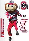 FATHEAD Ohio State Buckeyes Brutus The Buckeye Logo Official NCAA Vinyl Wall Graphics 17' INCH