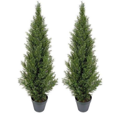 Pre-Potted 4' Artificial Cedar Topiary Outdoor Indoor Tree (Pack of 2)