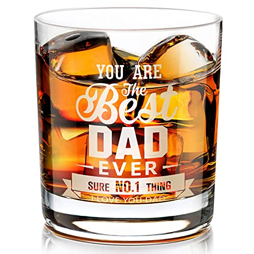 Gifts for Dad, Kollea You Are The Best Dad Ever Whiskey Glass 10 Oz, Funny Gag Gifts for Father' Day, Birthday Retirement Anniversary for Men Who Have Everything, Dad, Papa, Stepfather, Grandpa