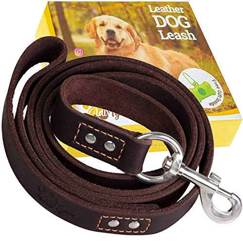 ADITYNA Leather Dog Leash 6 Foot x 3/4 inch - Soft and Strong Leather Leash for Large and Medium Dogs - Dog Training Leash (Brown)