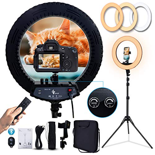 GLOUE 18 Inch Pro Ring Light Kit with Tripod Stand Phone Holder Ball Head Dimmable 3000-6000K Ringlight for Live Streaming YouTube Vlog Video Shooting Camera Photography Makeup Selfie