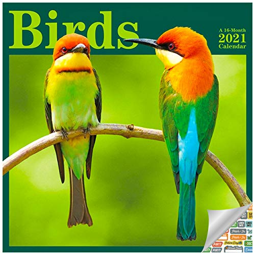 Birds Calendar 2021 Set - Deluxe 2021 Birding Wall Calendar with Over 100 Calendar Stickers (Bird Watching Gifts, Office Supplies)