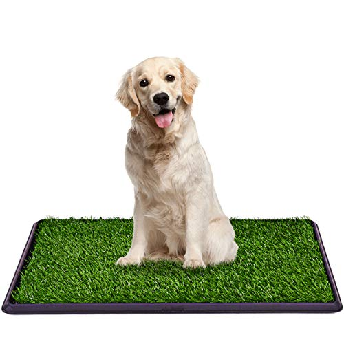 Giantex Dog Puppy Pet Potty Pad, Home Training Toilet Pad, Grass Surface Portable Dog Mat Turf Patch Bathroom Indoor Outdoor (30'x20')