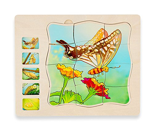 Wooden 5 Layers Life Cycle of a Butterfly Montessori Puzzle for Kids 3+