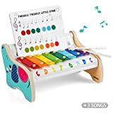 TOP BRIGHT Wooden Xylophone for Kids, Baby Musical Instrument Toy for 1 2 Year Old Boys Girls Toddlers