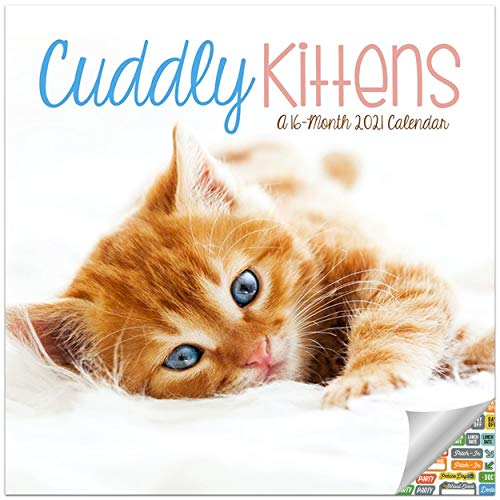 Cuddly Kittens Calendar 2021 Bundle - Deluxe 2021 Fluffy Kittens Wall Calendar with Over 100 Calendar Stickers (Cat Lovers Gifts, Office Supplies)