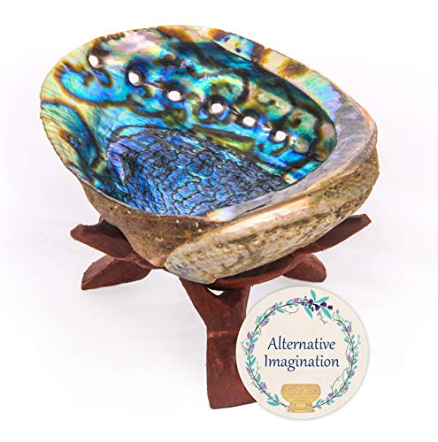 Alternative Imagination Hand Selected Premium Abalone Shell with Stained Wooden Cobra Stand