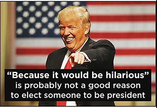 'Because it would hilarious' is probably not a good reason to elect someone to be president (Donald Trump)