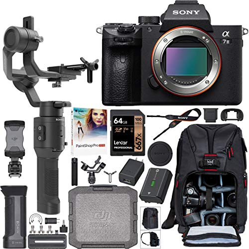 Sony a7III Full Frame Mirrorless Camera ILCE-7M3 Filmmaker's Kit with DJI Ronin-SC 3-Axis Handheld Gimbal Stabilizer Bundle + Deco Photo Backpack Case + 64GB Card + Corel Paintshop Pro Software
