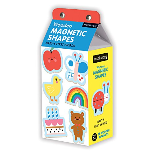 Baby's First Words Wooden Magnetic Shapes
