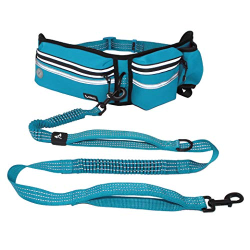 Kruz Jogging Belt & Hands Free Dog Leash - Retractable Shock Absorbing Bungee Leash with Waist Belt - Running, Walking, Training, Hiking - Comfortable, Adjustable, and Durable - Turquoise