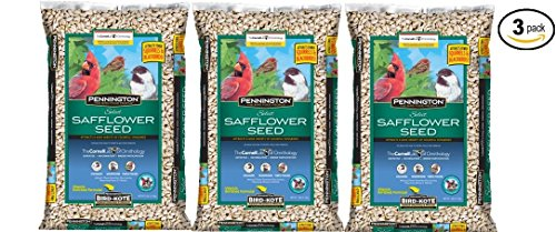 Pennington Wild Bird Feed and seed Select Safflower Seed, 7 Lbs (515638) - Pack of 3
