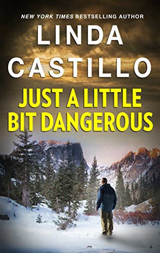 Just a Little Bit Dangerous (Silhouette Intimate Moments Book 1145)