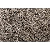 Shinoda Design Center 1 lb Bag Preserved Natural Spanish Moss