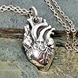 Anatomical Human Heart Charm Necklace - 925 Sterling Silver, 18'
