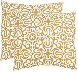 Safavieh Pillow Collection Throw Pillows, 20 by 20-Inch, Quixote Sienna, Set of 2