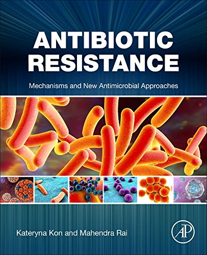 Antibiotic Resistance: Mechanisms and New Antimicrobial Approaches