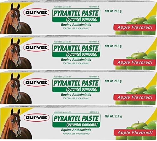 (4 Pack) Durvet Pyrantel Paste Wormer, 23.6gm Per Pack