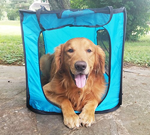 Bark Brite Pop Open Collapsible Travel Crate in 2 Sizes (Large)